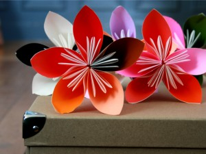 fleurs par Lemeilleurdudiy.com